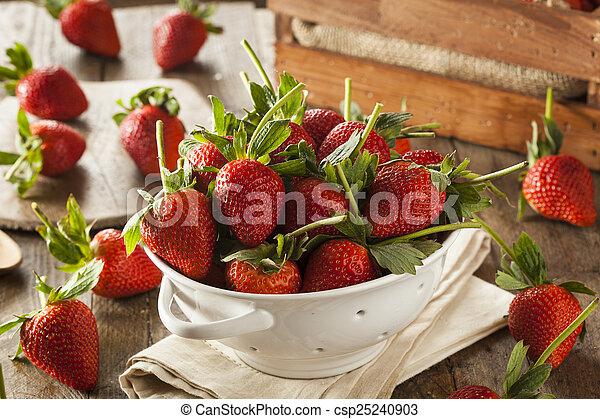 Fresas de tallo orgánico - csp25240903