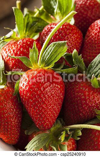 Fresas de tallo orgánico - csp25240910