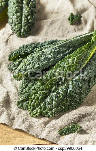 Lacinato de col verde crudo y orgánico - csp59906054
