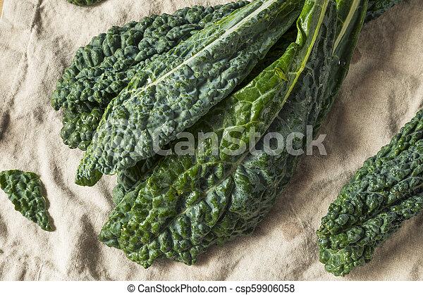 Lacinato de col verde crudo y orgánico - csp59906058
