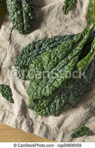 Lacinato de col verde crudo y orgánico - csp59906059