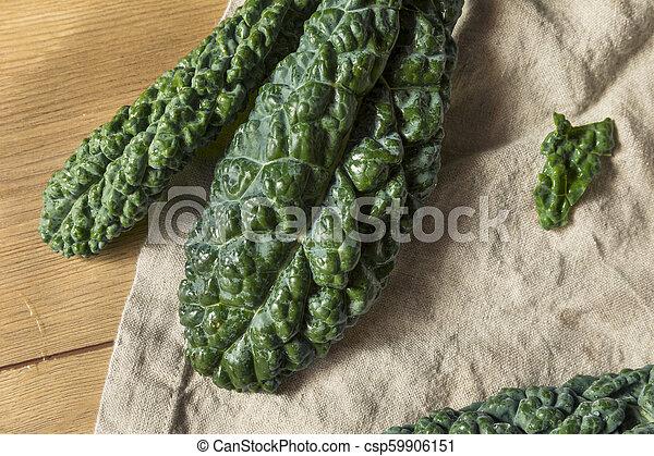 Lacinato de col verde crudo y orgánico - csp59906151