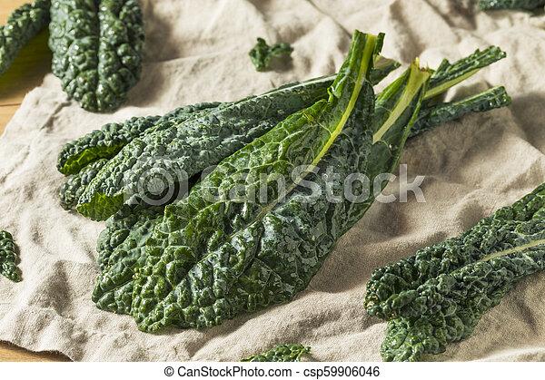 Lacinato de col verde crudo y orgánico - csp59906046