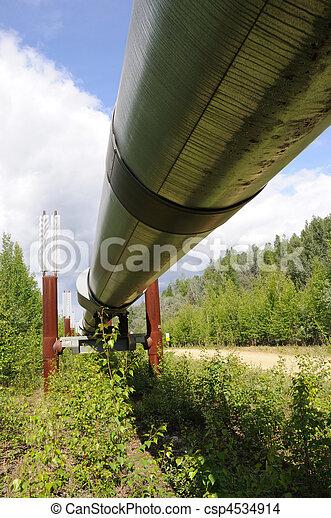 csővezeték, keresztül, alaszka, olaj - csp4534914