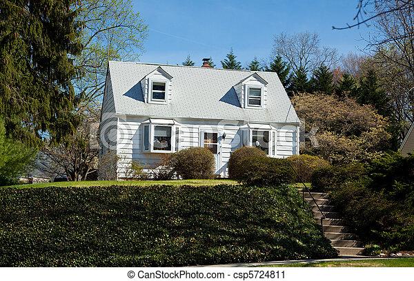 család, épület, külvárosi, egyedülálló, becsap, köpeny, maryland, lépcsőzetes vízszintes deszkaburkolat ház falán - csp5724811