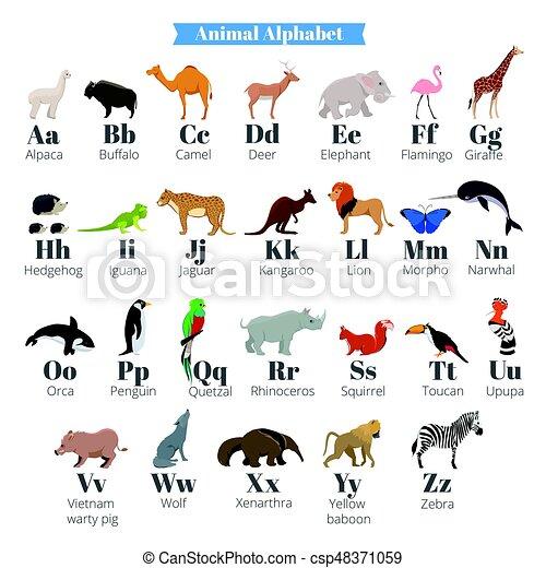 Állat angolul