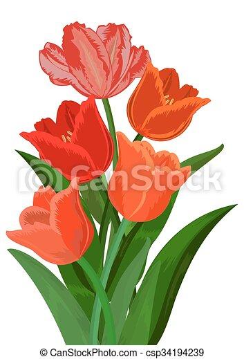 """Képtalálat a következőre: """"tulipán rajz"""""""