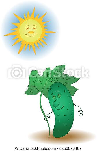 Cucumber and the sun - csp6076407