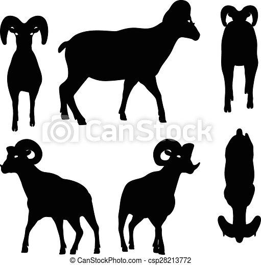 Una gran silueta de ovejas en pose andante - csp28213772