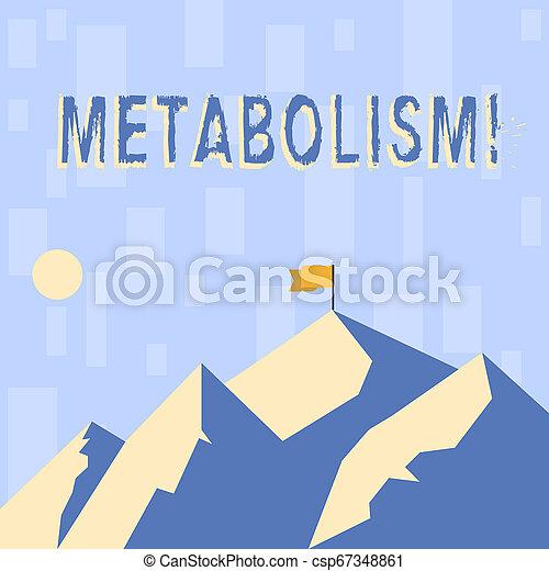 La nota de escritura muestra metabolismo. La foto de negocios muestra procesos químicos en el cuerpo para producir energía procesando montañas con sombra indicando la hora del día y bandera. - csp67348861