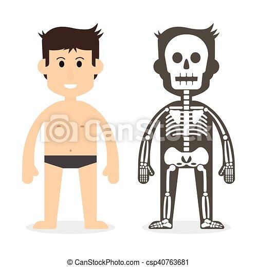 Cuerpo, sistema esquelético, humano. Cuerpo, plano, ), (, sistema ...