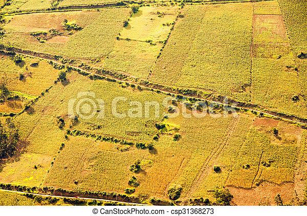 Cultivated Land Aerial Shot In Ecuador - csp31368273
