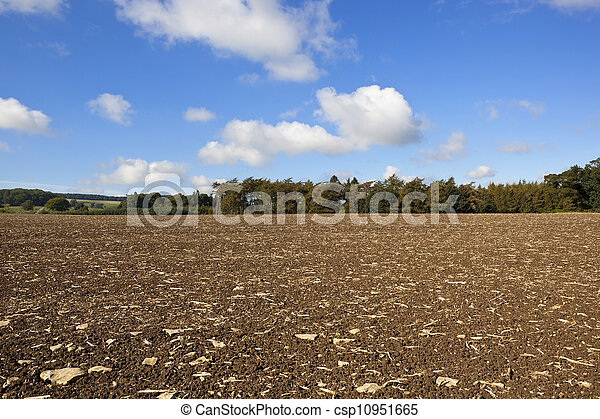 cultivated landscape - csp10951665