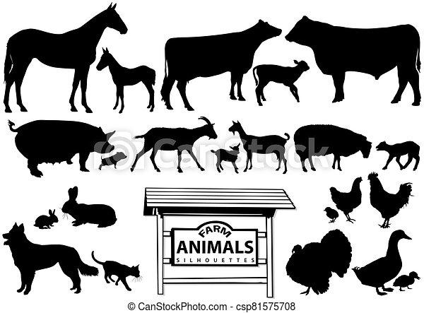 cultive animales, siluetas - csp81575708
