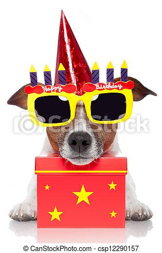 cumpleaños, perro - csp12290157