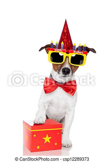 Perro de cumpleaños - csp12289373