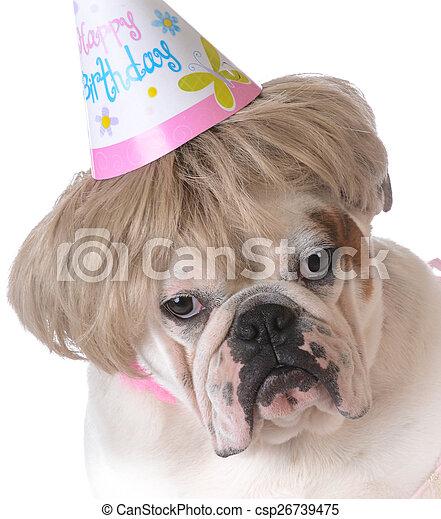 cumpleaños, perro - csp26739475