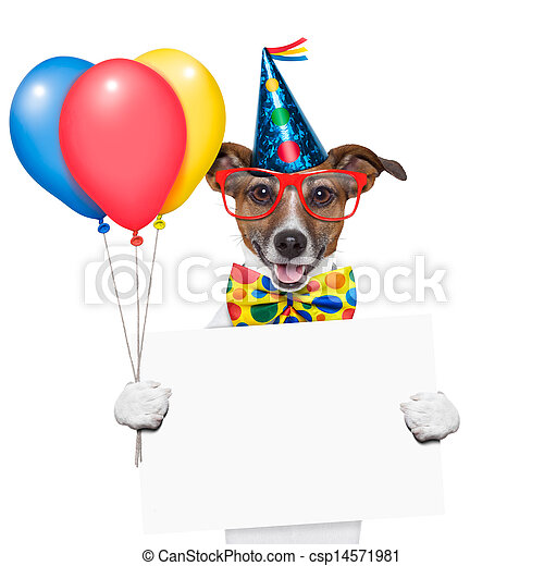 cumpleaños, perro - csp14571981