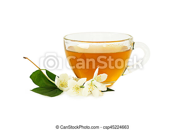 Cup of tea with jasmine isolated on white background. - csp45224663