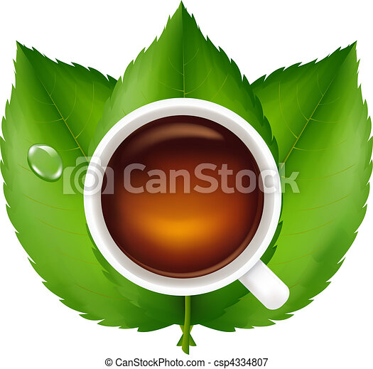 Cup With Tea And Green Leaves - csp4334807