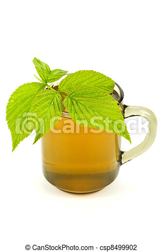 cup with tea and green leaves - csp8499902