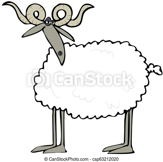 Curly horned sheep - csp63212020