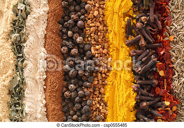 Curry spices - csp0555485