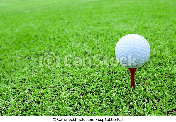 Bola de golf en un tee en campo de hierba verde - csp15685468