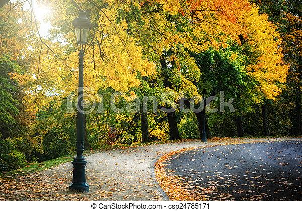Curvy road in autumn park - csp24785171