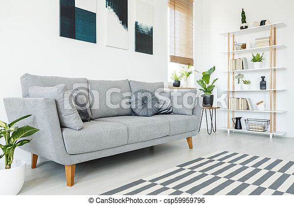 Cushions On Grey Couch And Carpet In Minimal Living Room Interior With Plant And Posters Real Photo