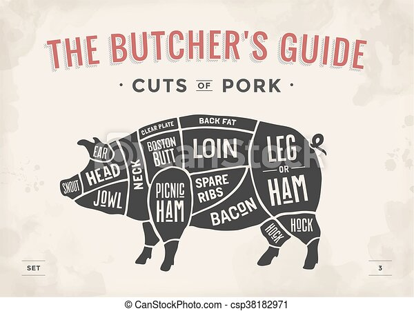 cut of meat set poster butcher diagram scheme and guide pork rh canstockphoto com