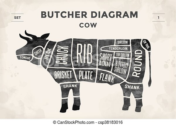 Cut of meat set poster butcher diagram and scheme cow vector poster butcher diagram and scheme cow vintage typographic hand ccuart Gallery