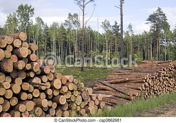 Cut trees in nature background - csp3862681