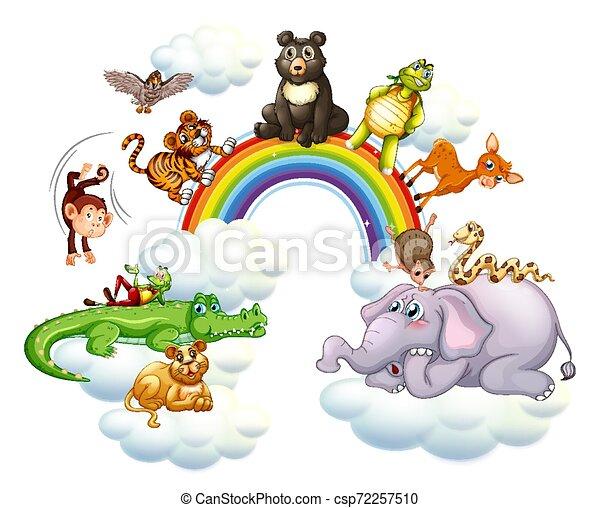 Cute animals over the rainbow - csp72257510