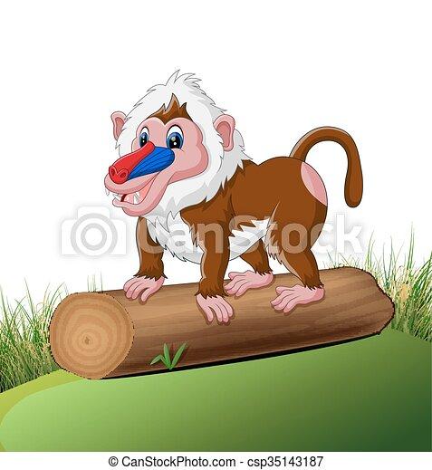 Cute baboon - csp35143187