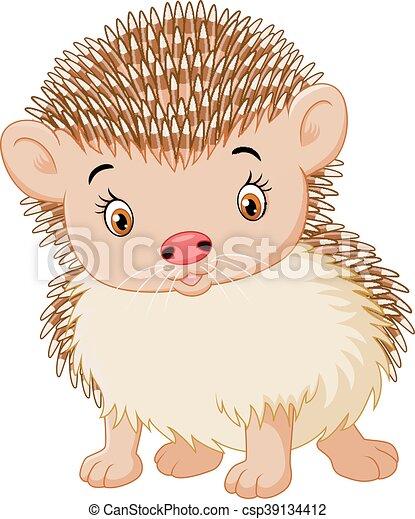 Vector Of Illustration Cute Baby Hedgehog