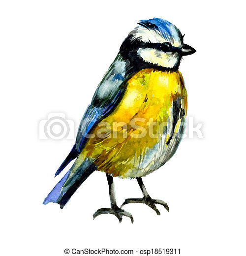 Cute birds for your design. watercolor - csp18519311
