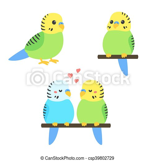 cute cartoon budgie vector illustration set little parakeet rh canstockphoto com free parakeet clipart Cute Parakeet Drawing