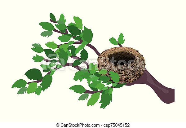 Cute cartoon nest isolated on a white background. Vector illustration. - csp75045152