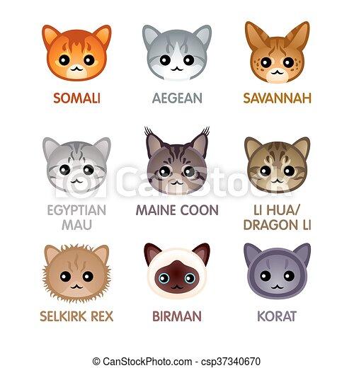 Cute cat icons, set IV - csp37340670