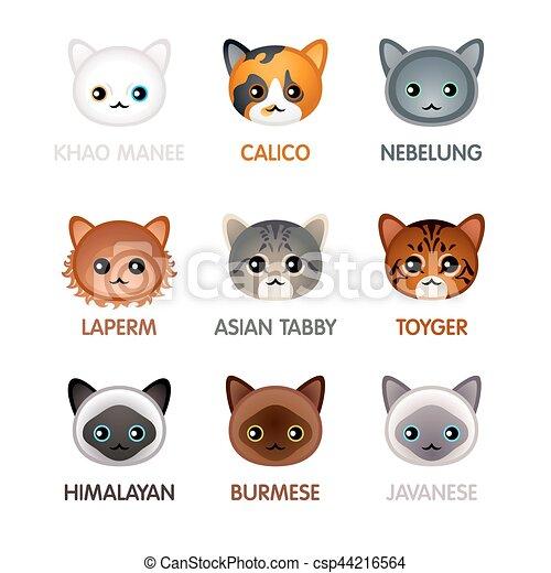 Cute cat icons, set V - csp44216564
