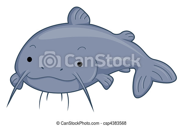 cute catfish