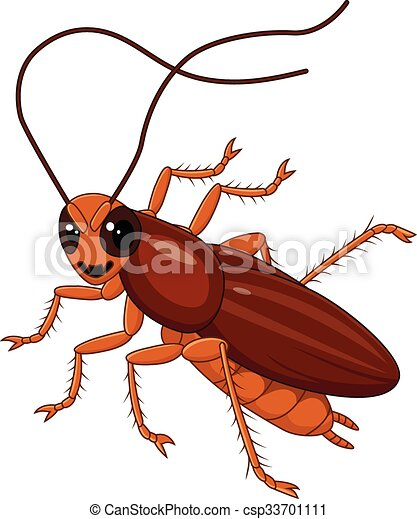 vector illustration of cute cockroach isolated on white vector rh canstockphoto com cockroach clipart free cockroach clipart black and white
