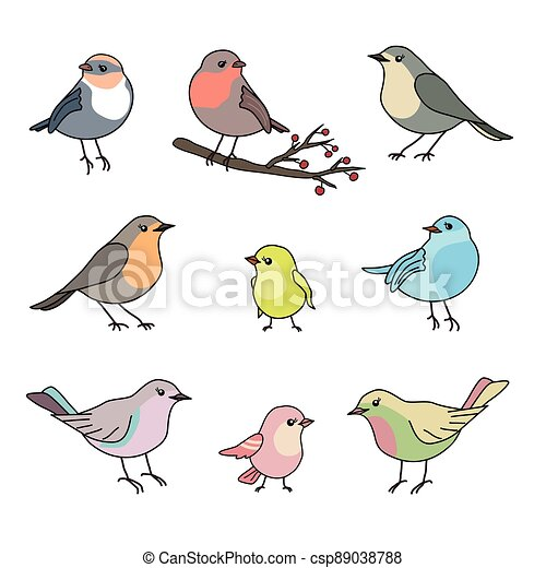 Cute collection set of nine various hand drawn colorful birds, black outline, pastel colors, isolated on white background. EPS 10 vector illustration - csp89038788