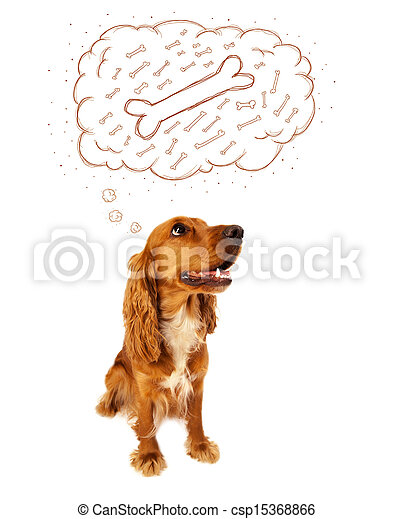 Cute dog with thought bubble thinking about a bone - csp15368866