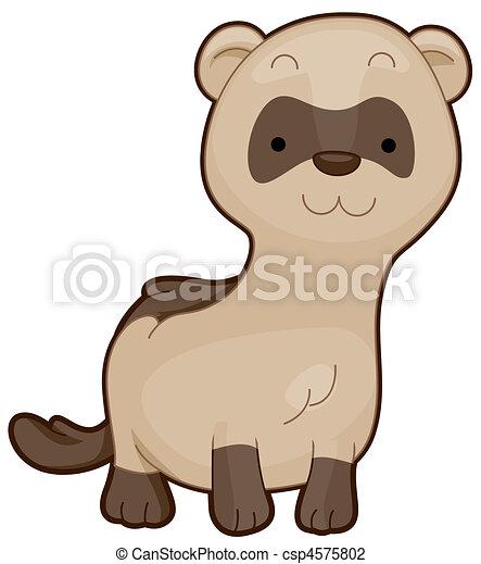 Cute Ferret - csp4575802