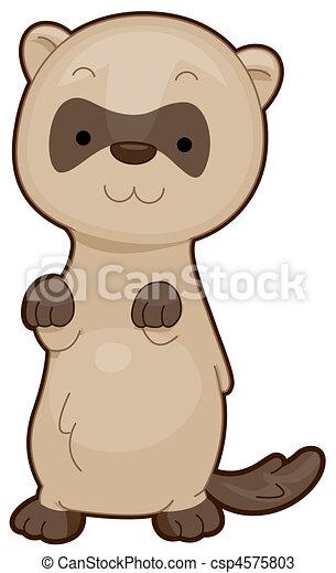 Cute Ferret - csp4575803