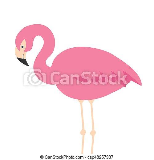 Cute Flamingo Ilustração Fundo Branca Caricatura Vetorial