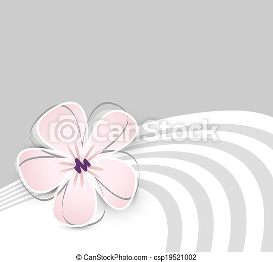 Cute Flower Background Soft Pink Flower Against Light Grey Background