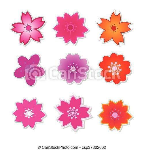 Cute Flower Sakura Vector